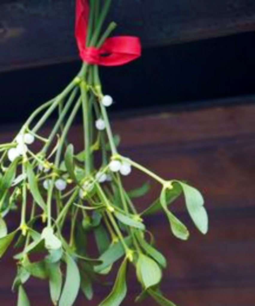 Hang a Sprig of Mistletoe -Best Ideas For Christmas Party Decorations
