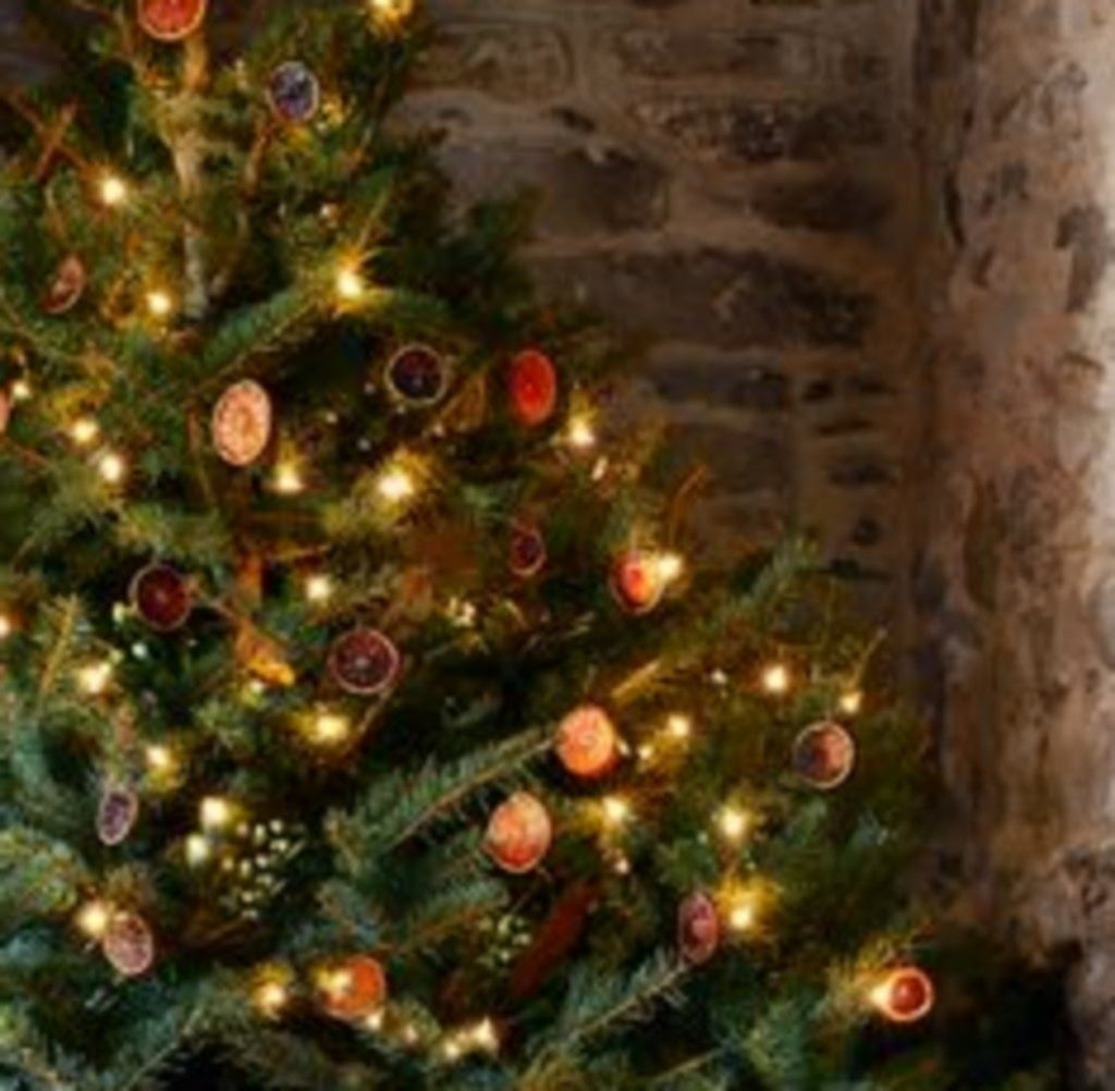 Old-Fashioned Christmas Tree