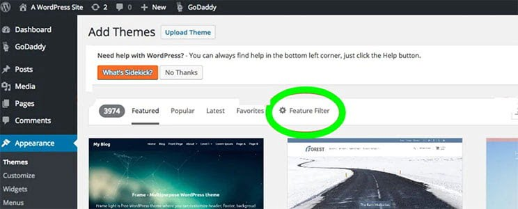 theme-feature-filter